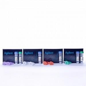 JM101 Competent Cells 5 x 0.2 ml