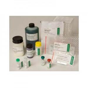 GPGV Complete kit 96
