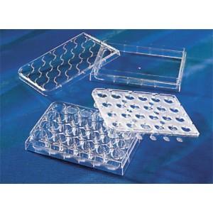 Soporte permeable HTS Transwell 24 pocillos, membrana poliester, poro 0,4 µm, inserto 6,5 mm, estéril, 12 Uds.