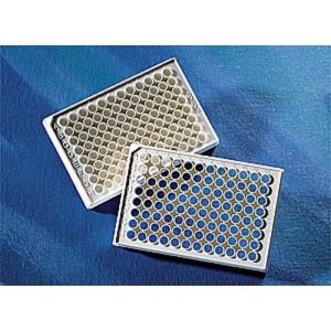 Microplaca 96 pocillos blanca fondo plano-transparente, adherencia alta, sin tapa, no estéril, 100 Uds.