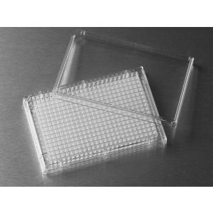 Microplaca 384 pocillos de poliestireno transparente, fondo plano, adherencia alta, sin tapa, no estéril, 100 Uds.