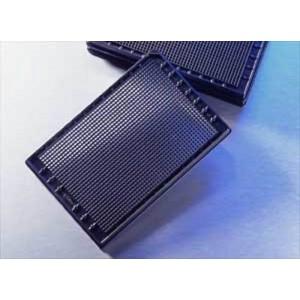 Microplaca 1536 pocillos negra con fondo transparente, PS, no tratada,sin tapa, no estéril, código barras, 50 Uds.
