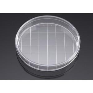 Placa de cultivo Biocoat de 150 mm, tratada TC, recubierta Poli-D-Lisina, cuadriculada, no estéril, 5 Uds.
