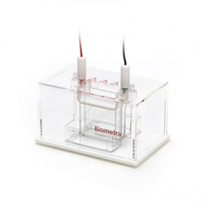 Sistema completo de electroforesis Minigel-Twin sin accesorios, para gel de 8,6 cm x 7,7 cm, 2 Geles