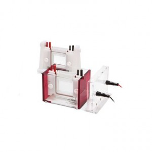 Cubeta ELP, Sistema Eco-Mini Eb, 1.0 Mm, Tamaño del Gel 9.4 X 8.0 Cm, 2 Geles