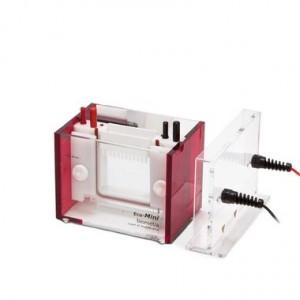 Cubeta de electroforesis Eco-Mini Ebc, sin Soporte de Fundición, 1.0 mm