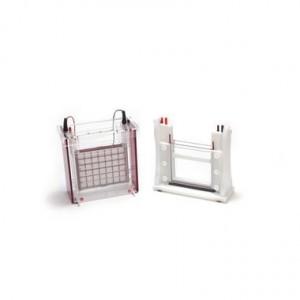 Sistema completo de electroforesis Eco-Maxi Ebc para geles de 1.0 mm, 19.4 x 18.5 cm, 2 Geles