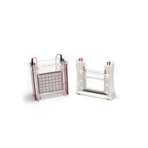 Cubeta ELP, Sistema Eco-Maxi Ebc, 1.0 Mm, Tamaño del Gel 19.4 X 18.5 Cm, 2 Geles
