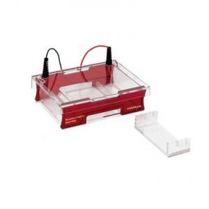Cubeta ELP, Compacto Multi-Wide para Gel de 15 X 7 Cm