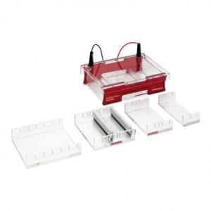 Cubeta de electroforesis Compacto Multi-Wide para Geles 15 x 7_10_15_18  cm