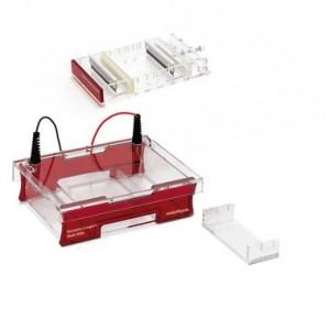 Sistema completo de electroforesis Compact Multi-Wide para Gel de 15 x 7 cm