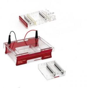 Sistema completo de electroforesis Compact Multi-Wide para gel de 15 x 15 cm
