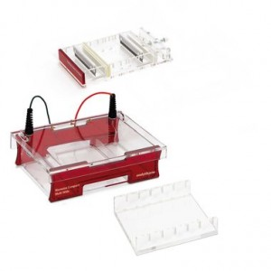 Sistema completo de electroforesis Compact Multi-Wide para gel de 15 x 18 cm