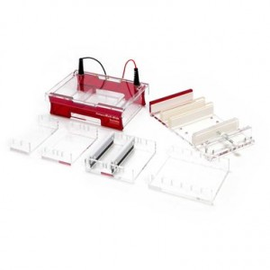 Sistema completo de electroforesis Compact Multi-Wide para gel de 15 x 7_10_15_18 cm