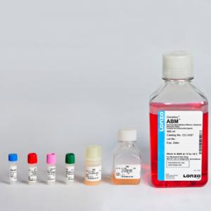 SFM - Medio especial Astrocitos humanos y de rata AGM BulletKit, contiene medio basal y suplementos, 1 kit