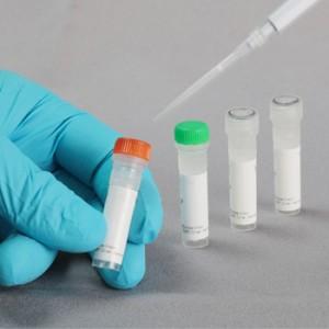 FastGene Restriction Enzyme, Enzima de restricción Avr II (100 U)