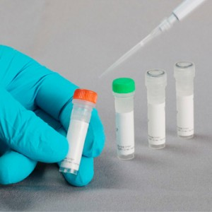 FastGene Restriction Enzyme, Enzima de restricción BtsC I (2000 U)