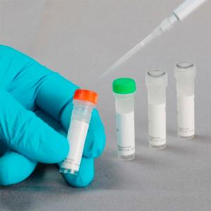 FastGene Restriction Enzyme, Enzima de restricción Xho I (5000 U)