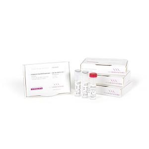 Polimerasa Hot Start Taq Polimerasa para PCR, 1000 unidades