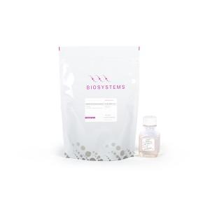 MasterMix qPCR SyGreen con fluoresceína, 2000 x 20µl rxns, 1 botella de 50ml