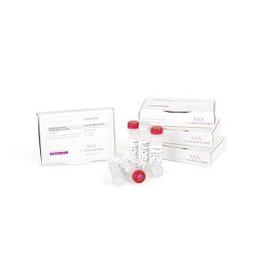 Kit de RT-qPCR SyGreen Lo-ROX de un paso para amplificación de ARN de pocas copias, 1200x20rxns, 12x1ml, RTasa 12x200µl