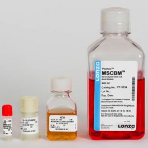 SFM - Medio especial células madre mesenquimales hMSC, MSCGM BulletKit, contiene medio basal y suplementos, 1 kit