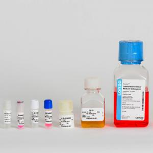 Medio especial células hMSC de difereciación osteogénica (BulletKit) contiene medios y suplementos, 1 kit