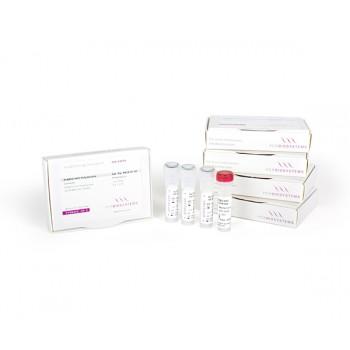 Polimerasa de alta fidelidad para PCR, HiFi Polimerasa, 1000 unidades