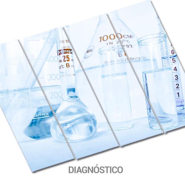 Categoría diagnóstico