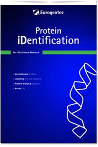Protein-identification-eurogentec