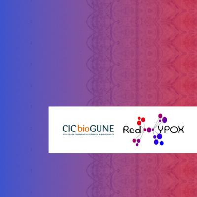II Reunión de la Red de Excelencia de Investigación en Hipoxia