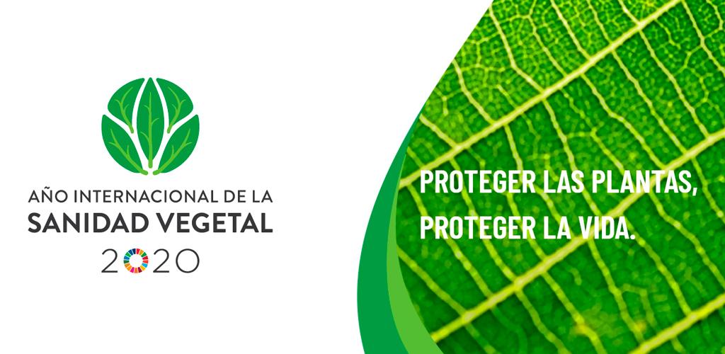 Naciones Unidas declara 2020 como el Año Internacional de la Sanidad Vegetal (IYPH)