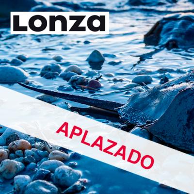 LAL DAY - APLAZADO-