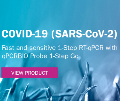 Kit One Step RT-qPCR para sondas de PCR Biosystems