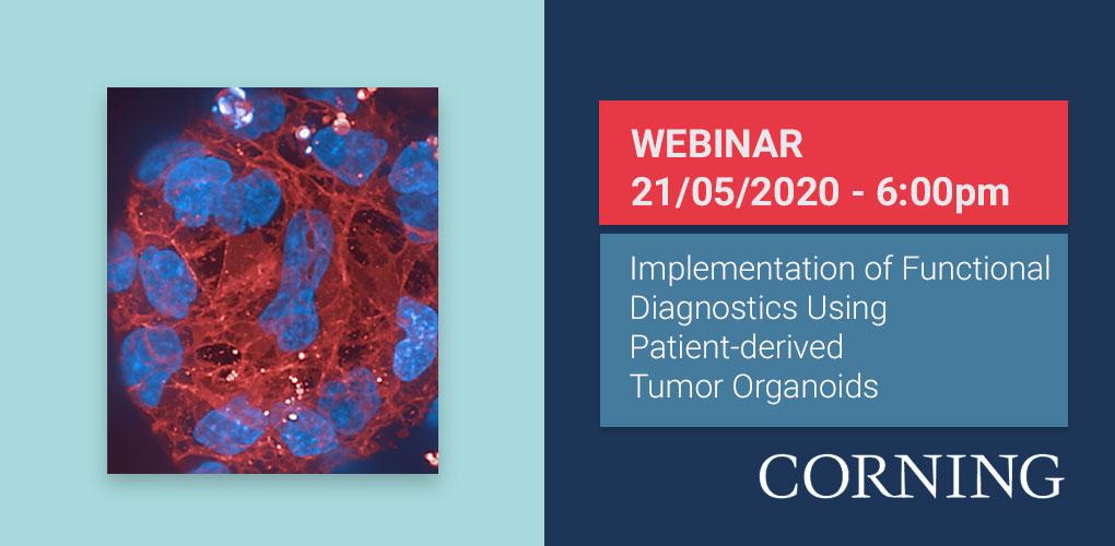 Implementation of Functional Diagnostics Using Patient-derived Tumor Organoids