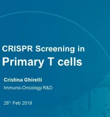 Horizon: CRISPR Screening in Primary Human T Cells Extending Cell Type Capabilities