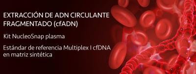 Extracción de ADN circulante fragmentado (cfADN)